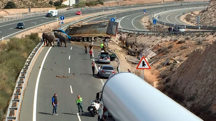Modificación del Código Penal en delitos contra la seguridad vial